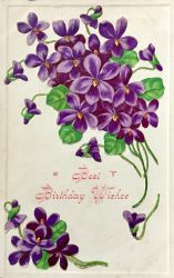 12 Things You Maybe Didn't Know About Violets by Yesterdays-Paper