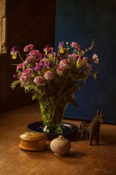Flowers and other collected objects by CouchyCreature