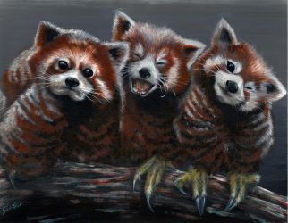 Red Panda/Owl Combination Painting by JohnVitaleArt