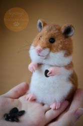 Hamster Needle Felted by Lyntoys