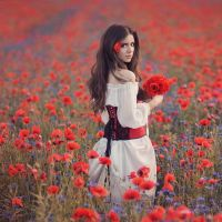 Papaver by Anette89