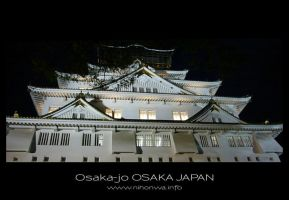 Osaka-jo by night -2- by Lou-NihonWa