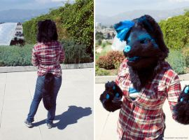 Starwolf Partial (2) by yeep-yeep