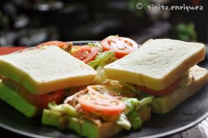 Vegetable sandwich by tinitz30