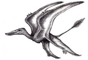 Dream Anisopterus, Four-Winged Pterosaur by KingOvRats