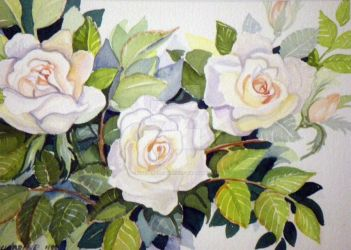 Frenchlace Watercolor Rose by HouseofChabrier