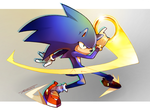 Sonic by Tomycase