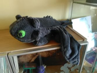 Toothless plushy by sebyZart