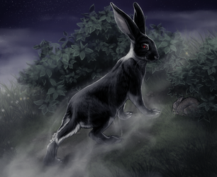 The Black Rabbit of Inle by Nyctra