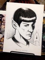 Spock Tribute by 47ness