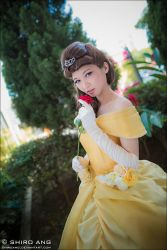 Cosfest 2013 - Beauty and the Beast by shiroang
