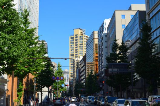Busy street by tokyo2501