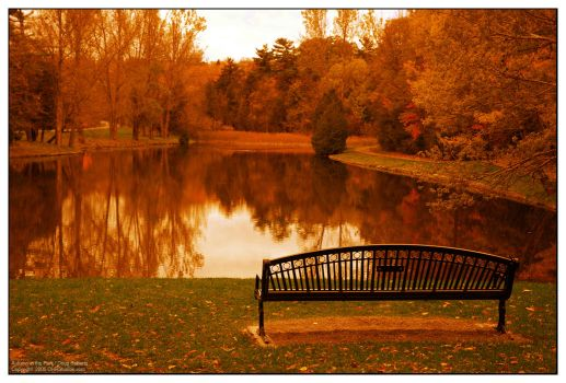 Autumn in the Park by dhrstudios