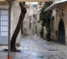 Jewish Quarter, Old City Jerusalem by dpt56