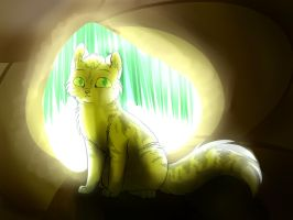 cat in cave by SolarXolverite