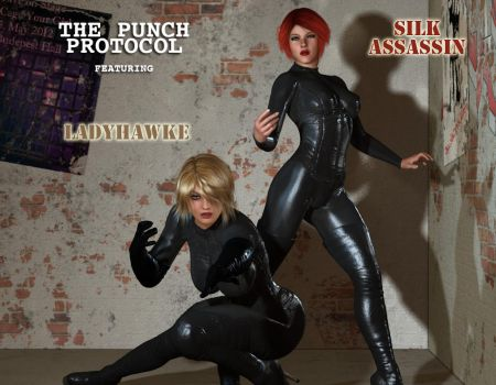 Ladyhawke and The Silk Assassin by cpunch