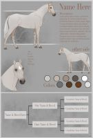 YHH Reference Sheet by Rhaine-Horses