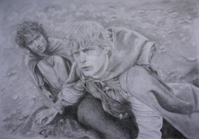 Frodo and Sam in Mordor by bittenbitten