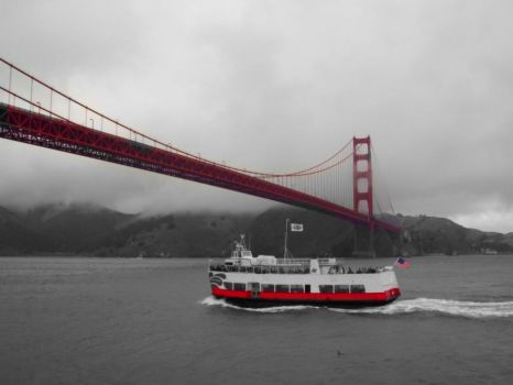 The Bay and the Bridge by AngelSailor