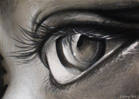 Day 145 - ACEO Drawing Project for Charity by secrets-of-the-pen