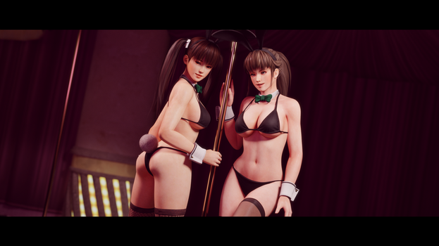 Hitomi and Leifang Bunnygirls 4 by Chrissy-Tee