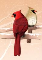 Cardinal Pair by Sarahorsomeone