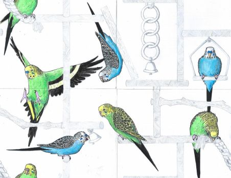Budgie Park Repeating Wallpaper Final by BudgieBluBird