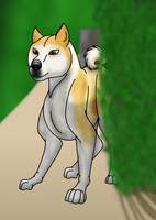 How I Draw Hachi (request) download by horse14t