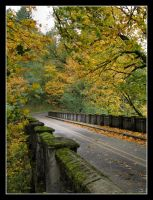 Autumn in Oregon by MsRoza