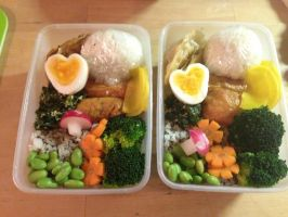 First Bento by mumitrold