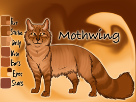 Mothwing of RiverClan - The Last Hope by Jayie-The-Hufflepuff