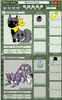 PMD: Team Shattered Angels by kitzune-griffith