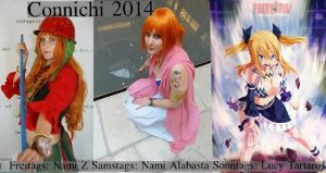 Cosplay Connichi 2014 by Lucy-chan90