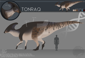 OC Ref Sheet - Tonraq by NocturnalCarnage