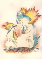 Hericendre / Feurisson / Typhlosion by naliena