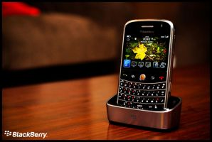 Blackberry Bold 9000 by midwatch