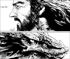 Thorin and Smaug by evankart