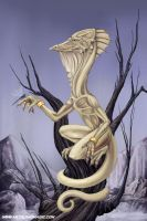 The Wingless by ursulav