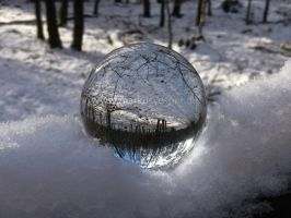 Glass sphere in the snow on a branch by Acrylicdreams