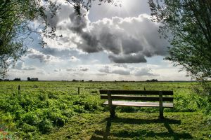 bench in the Netherlands by Yoquini