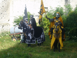 Black and Yellow Knight 3 by chavi-dragon