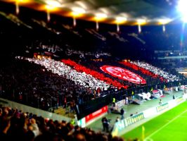 SGE Fans _Tiltshift_ 01 by RSFFM