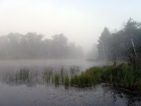 Foggy Lake - 10 by BVicius