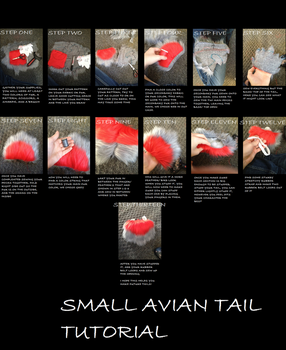 SMALL AVIAN TAIL TUTORIAL by TheDrolfPrince