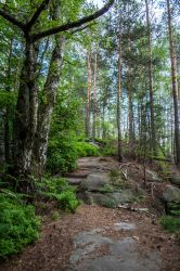 Saxon Switzerland National Park 5 by Stegie