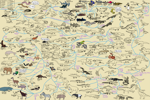 The Cartoon Guide to Vertebrate Evolution