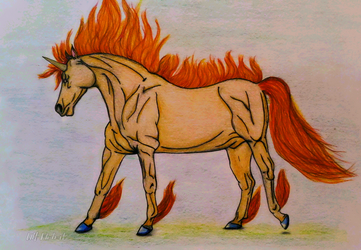 Rapidash by OlgaMidnightwolf