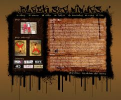 BSN Site 2006 by ice26