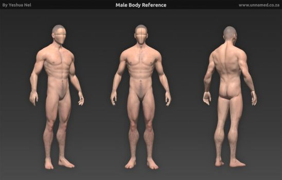 Male Body Reference Model by YeshuaNel
