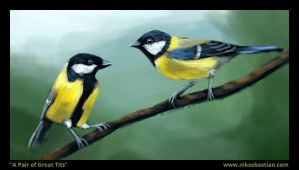 A Pair of Great Tits by NikSebastian